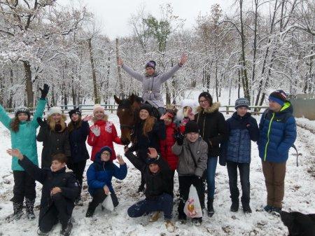 Ученики 6Б класса совершили  удивительную прогулку в загородном парке.